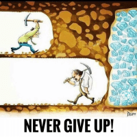 Life, Memes, and Never: NEVER GIVE UP! The biggest lesson of your life. Never give up! - millionairementor