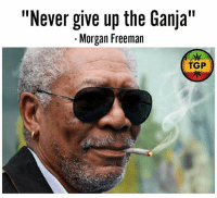 "Words of Wisdom from the man himself 💯💯 420 thc cannabis marijuana: ""Never give up the Ganja  II  Morgan Freeman  TGP Words of Wisdom from the man himself 💯💯 420 thc cannabis marijuana"