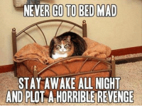 awake all night: NEVER GO TO BED MAD  STAY AWAKE ALL NIGHT  AND PLO  A HORRIBLE REVENGE