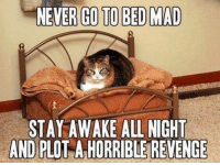 🐈🐾: NEVER GO TO BED MAD  STAY AWAKE ALL NIGHT  AND PLO  A HORRIBLE REVENGE 🐈🐾