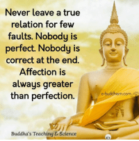 Buddhism: Never leave a true  relation for few  faults. Nobody is  perfect. Nobody is  correct at the end  Affection is  always greater  than perfection  Buddha's Teaching & Science  e-buddhism com