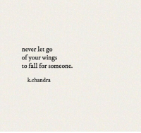 never let go: never let go  of your wings  to fall for someone.  k.chandra