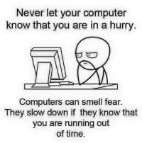 Computer Meme: Never let your computer  know that you are in a hurry  Computers can smell fear.  They slow down if they know that  you are running out  of time.