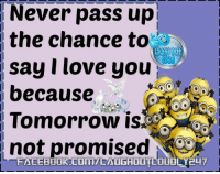 Dank, Love, and Ups: Never pass up  the chance to  say I love you  because  Tomorrow is  not promised