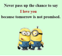 Love, Memes, and Ups: Never pass up the chance to say  I love you  because tomorrow is not promised.