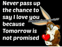 Love, Memes, and Ups: Never pass up  the chance to  say I love you  because  Tomorrow is  not promised