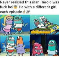 Anaconda, Memes, and Fuck: Never realised this man Harold was  fuck boi He with a different girl  each episode 100 Pimpin ✋😈