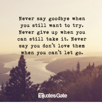 Love, Never, and Gate: Never say goodbye when  you still want to try.  Never give up when you  can still take it. Never  say you don't love them  when you can't let go.  Ruotes Gate