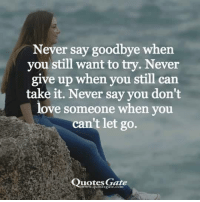 Love, Quotes, and Never: Never say goodbye when  you still want to try. Never  give up when you still can  take it. Never say you don't  love someone when you  can't let go.  Quotes Gate