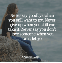 Love, Quotes, and Never: Never say goodbye when  you still want to try. Never  give up when you still can  take it. Never say you don't  love someone when you  can't let go.  Quotes Gate  www.quotesgate.com