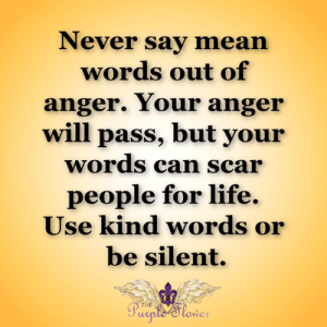 Life, Memes, and Mean: Never say mean  words out of  anger. Your anger  will pass, but your  words can scar  people for life.  Use kind words or  be silent.  THE  Purple Slower <3