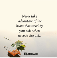 Heart, Never, and Gate: Never take  advantage of the  heart that stood by  your side when  nobody else did.  Euotes Gate