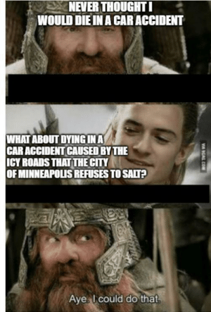 I will keep posting LoTR memes until my street is salted by our city: NEVER THOUGHT I  WOULD DIE IN A CAR ACCIDENT  WHAT ABOUT DYINGINA  CAR ACCIDENT CAUSED BY THE  ICY ROADS THAT THE CITY  OF MINNEAPOLIS REFUSES TO SALT?  Aye I could do that  V GAG.COM I will keep posting LoTR memes until my street is salted by our city