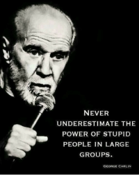 <p>Words Of Truth From George Carlin.</p>: NEVER  UNDERESTIMATE THE  POWER OF STUPID  PEOPLE IN LARGE  GROUPS  GEORGE CARLIN <p>Words Of Truth From George Carlin.</p>
