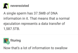 Information, Single, and Dna: neverexisted  A single sperm has 37.5MB of DNA  information in it. That means that a normal  ejaculation represents a data transfer of  1,587.5TB.  fituring  Now that's a lot of information to swallow Thats a lot of information to swallow