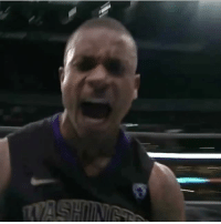 College, Memes, and Isaiah Thomas: NeverForget when Isaiah Thomas hit this stepback Buzzer Beater in College 🙌🏼🔥