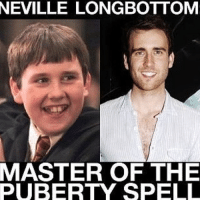 Who else agrees? 😂: NEVILLE LONGBOTTOM  MASTER OF THE  PUBERTY SPELL Who else agrees? 😂