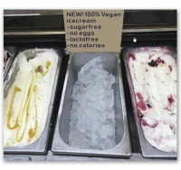 Icecream: NEW! 100% Vegan  icecream  sugarfree  -no eggs  -lactofree  no calories