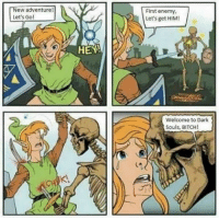 Bitch, Link, and Dark Souls: New adventure  Let's Go!  First enemy,  Let's get HIM!  HEY!  Welcome to Dark  Souls, BITCH! Not what Link was expecting https://t.co/bWu1rWVFEw
