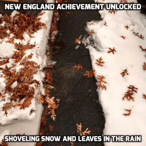 England, Rain, and Snow: NEW ENGLAND ACHIEVEMENT UNLOCKED  SHOVELING SNOW AND LEAVES IN THE RAIN Meanwhile in New England