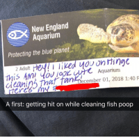 Dating, England, and Memes: New England  Aquarium  Protecting the blue planet  this Am! low logK Aquarium  aeain That fanFreember 01, 2018 1:40  A first: getting hit on while cleaning fish poop When you set your location to underwater on @hinge. Get @hinge the dating app now, link in bio!