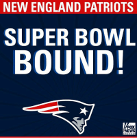 Congratulations to the AFC champions - New England Patriots!: NEW ENGLAND PATRIOTS  SUPER BOWL  BOUND!  FOX  NEWS Congratulations to the AFC champions - New England Patriots!