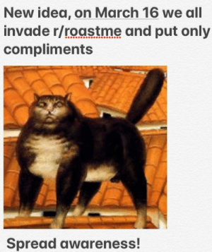 Memes, Tumblr, and Blog: New idea, on March 16 we all  invade r/roastme and put only  compliments  Spread awareness! positive-memes:  New picture new idea