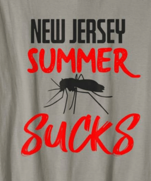 Funny, Summer, and New Jersey: NEW JERSEY  SUMMER  gucks Some custom for our funny lover