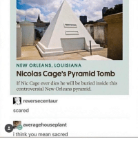Ironic, Nicolas Cage, and Scare: NEW ORLEANS, LOUISIANA  Nicolas Cage's Pyramid Tomb  If Nic Cage ever dies he will be buried inside this  controversial New Orleans pyramid.  e reverse centaur  scared  averagehouseplant  i think you mean sacred if