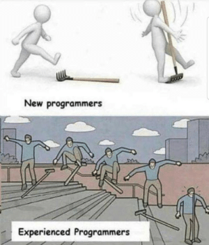 New, Caption, and This: New programmers  Experienced Programmers Caption this