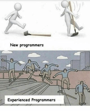 New, Like, and Experienced: New programmers  Experienced Programmers Something like that xD