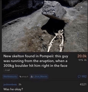 Memes, Okay, and Running: New skelton found in Pompeii: this guy  was running from the eruption, when a  300kg boulder hit him right in the face  20.0k  97% 4h  It/all  Welthatsucks ansa.it Shot Marvin  982  4521  jacksonbros 3h  Was he okay? Asking the important questions via /r/memes https://ift.tt/2NxHFLc