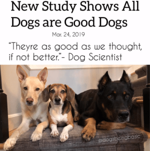 "Dogs, News, and Thank You: New Study Shows All  Dogs are Good Dogs  ""Theyre as good as we thought,  Mar. 24, 2019  if not better.""- Dog Scientist  edogsbeingbasic Thank you science for this important news."
