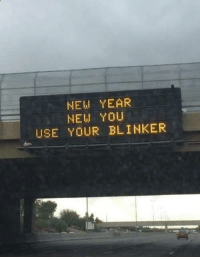 New Year's, Resolution, and New: NEW YEAR  NEW YOU  USE YOUR BLINKER The perfect New Years resolution