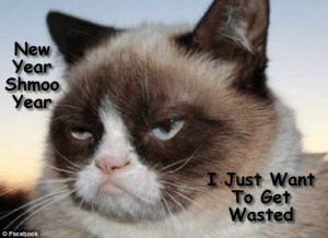 Cat New Year Quotes Inspirational Grumpy Cat Meme S by Gary Graefen ...: New  Year  Shmoo  Year  I Just Want  To Get  Wasted  © Facebook Cat New Year Quotes Inspirational Grumpy Cat Meme S by Gary Graefen ...