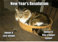 Grumpy Cat, Pusheen, and Cat: New Year's Resolution:  Option B:  Option A:  Buy a bigger  Lose weight  basket Join Pusheen the Cat !