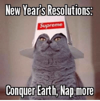 Dank, 🤖, and Earthing: New Years Resolutions  Supreme  Conquer Earth, Nap more Sounds like a plan. Count me in. http://9gag.com/gag/aw5DK5y?ref=fbpic