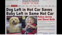 America, New York, and News: NEW YORK  AMERİCA  NEW YORK  LOCAL news politics sports -showbiz opnon living photosvideoautos  Dog Left in Hot Car Saves  Baby Left in Same Hot Car  Police Arrive  and Shoot Both