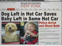 "Fake, Love, and New York: NEW YORK  AMERO A  NIW YORK  OCAL news politics sports showbie opinion ving photos video autos  Dog Left in Hot Car Saves  Baby Left in Same Hot Car  Police Arrive  and Shoot Both <p><a href=""http://memehumor.net/post/175174027018/i-love-fake-news"" class=""tumblr_blog"">memehumor</a>:</p>  <blockquote><p>I love fake news</p></blockquote>"