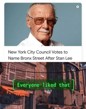 New York, Stan, and Stan Lee: New York City Council Votes to  Name Bronx Street After Stan Lee  Everyone liked that
