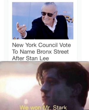 New York, Stan, and Stan Lee: New York Council Vote  To Name Bronx Street  After Stan Lee  We won Mr. Stark We did it