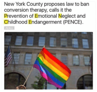 Memes, New York, and Acronym: New York County proposes law to ban  conversion therapy, calls it the  Prevention of Emotional Neglect and  Childhood Endangerment (PENCE)  /R/ALL Awesome acronym!