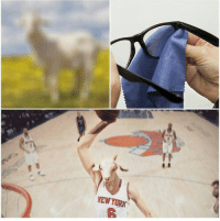 PorzinGOAT! Kristaps Porzingis with a career-high 35 points tonight, cracking 30 for the first time ever! Congrats KP! -Tommy  New York Knicks Memes: NEW YORK PorzinGOAT! Kristaps Porzingis with a career-high 35 points tonight, cracking 30 for the first time ever! Congrats KP! -Tommy  New York Knicks Memes