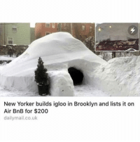 Funny, Brooklyn, and New Yorker: New Yorker builds igloo in Brooklyn and lists it on  Air BnB for $200  dailymail.co.uk Incredibly boss move