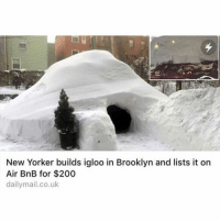 Memes, Wshh, and Brooklyn: New Yorker builds igloo in Brooklyn and lists it on  Air BnB for $200  dailymail.co.uk This dude is a legend.. straight finessin' 😂👏 WSHH