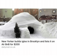 Dank, Brooklyn, and New Yorker: New Yorker builds igloo in Brooklyn and lists it on  Air BnB for $200  dailymail.co.uk Would you stay here?
