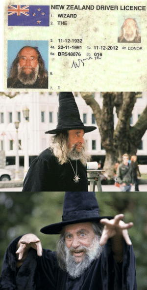 "airyairyquitecontrary:  robinsherman:  spoopy-kanaya:  bundyspooks:  In New Zealand, there is a man legally known as 'The Wizard' who is an educator, comedian, magician and politician. Some of his political ideas include: Abolishing old-fashioned gender roles Travelling to find the ""center of the universe"" Replacing God and the Church with Wizardry and the World Wide Web  ""Wizard, The""  This is The Wizard, reblog in 35 seconds to reveal the secrets of the center of the universe and abolish old fashioned gender roles.  The Wizard of New Zealand is not just legally named ""The Wizard"" so he can appear on his driver's licence that way.  He is actually, literally, officially, the Wizard of New Zealand and was appointed to that role by Prime Minister Mike Moore in 1990.   : NEW ZEALAND DRIVER LICENCE  1. WIZARD  2. THE  3. 11-12-1932  4a. 22-11-1991 4b. 11-12-2012 4c. DONOR  5a. BR548076 5b. 016  6.  7. 1 airyairyquitecontrary:  robinsherman:  spoopy-kanaya:  bundyspooks:  In New Zealand, there is a man legally known as 'The Wizard' who is an educator, comedian, magician and politician. Some of his political ideas include: Abolishing old-fashioned gender roles Travelling to find the ""center of the universe"" Replacing God and the Church with Wizardry and the World Wide Web  ""Wizard, The""  This is The Wizard, reblog in 35 seconds to reveal the secrets of the center of the universe and abolish old fashioned gender roles.  The Wizard of New Zealand is not just legally named ""The Wizard"" so he can appear on his driver's licence that way.  He is actually, literally, officially, the Wizard of New Zealand and was appointed to that role by Prime Minister Mike Moore in 1990."