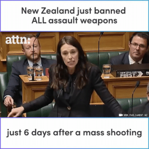 New Zealand just banned ALL assault weapons within days of the Christchurch shooting.: New Zealand iust banned  ALL assault weapons  attn:  NEW Z  wWW. PARLIAMENT. NZ  just 6 days after a mass shooting New Zealand just banned ALL assault weapons within days of the Christchurch shooting.