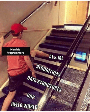 Hello, World, and Knowledge: Newbie  Programmers  Al& ML  ALGORITHMS  DATA STRUCTURES  0OP  HELLO WORLD ML/AL expert without basic knowledge?