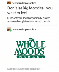 why does everyone assume we are american? ~Ray: newborndropletsofice  Don't let Big Mood tell you  what to feel  Support your local organically-grown  sustainable gluten-free small moods  newborndropletsofice  WHOLE  MOODS  M A R K E T  Source: newborndropletsofice why does everyone assume we are american? ~Ray